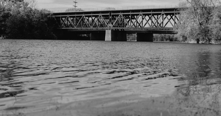 Fox Double Bridge